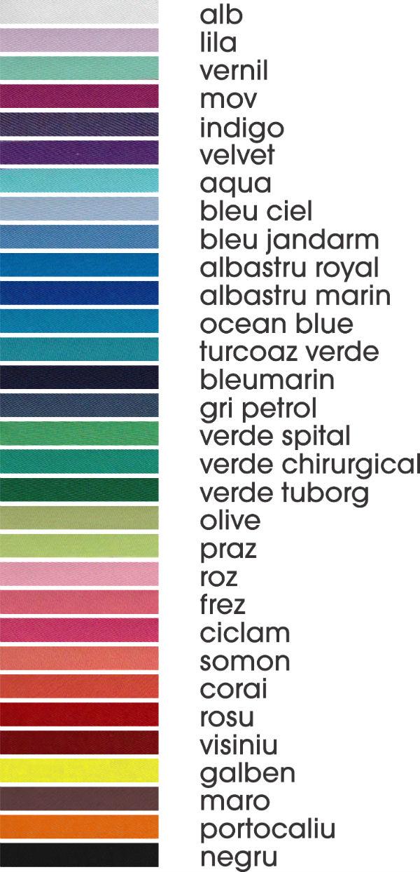 Paleta de Culori TAG
